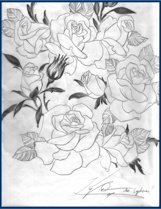 Kat von D sketch of roses for packaging design for her makeup line with Sephora