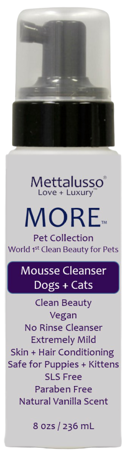 more_mousse_cleanser_png-front-mock-up